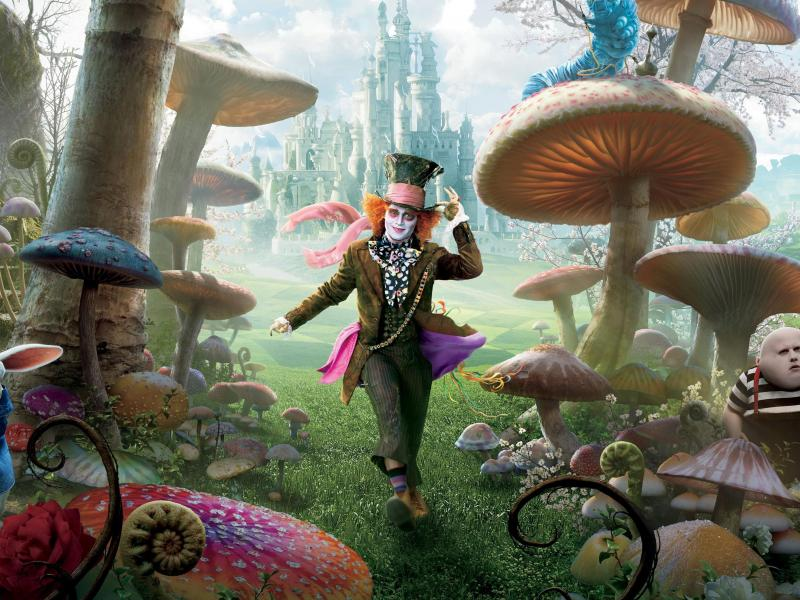 Alice in Wonderland - expedition to mushrooming (10×10)