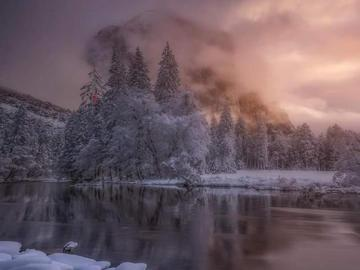beautiful winter view - Snow-covered trees and snow lying around the river