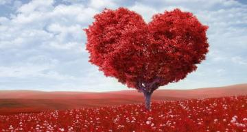 Valentine tree - colorful jigsaw puzzle