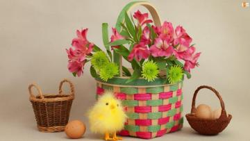 Easter atmosphere - basket with flowers, chicken and eggs