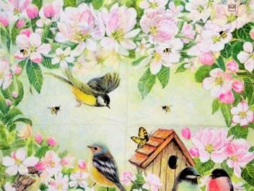 flowers - nature itself - flowers and little birds