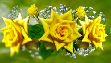 decorations c.d - three yellow roses in a bouquet