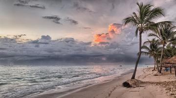 Beach in the Dominican Republi - Beach in the Dominican Republic. Caribbean.The best puzzle zone with nature.