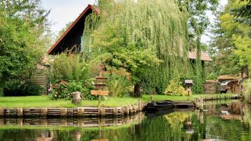 House by the canal. - House by the canal. Willow.