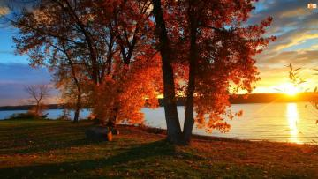 Sunrise over the river. - Autumn sunrise over the river. You can see that it's fall. Autumn leaves lie on the ground.