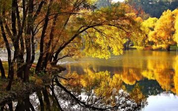 A view in the colors of autumn - Autumn dew reflected in water