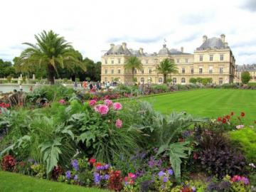 Luxembourg garden - Luxembourg garden, in the background a palace, flowers, Paris