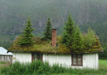 Norway - Cottage with trees.