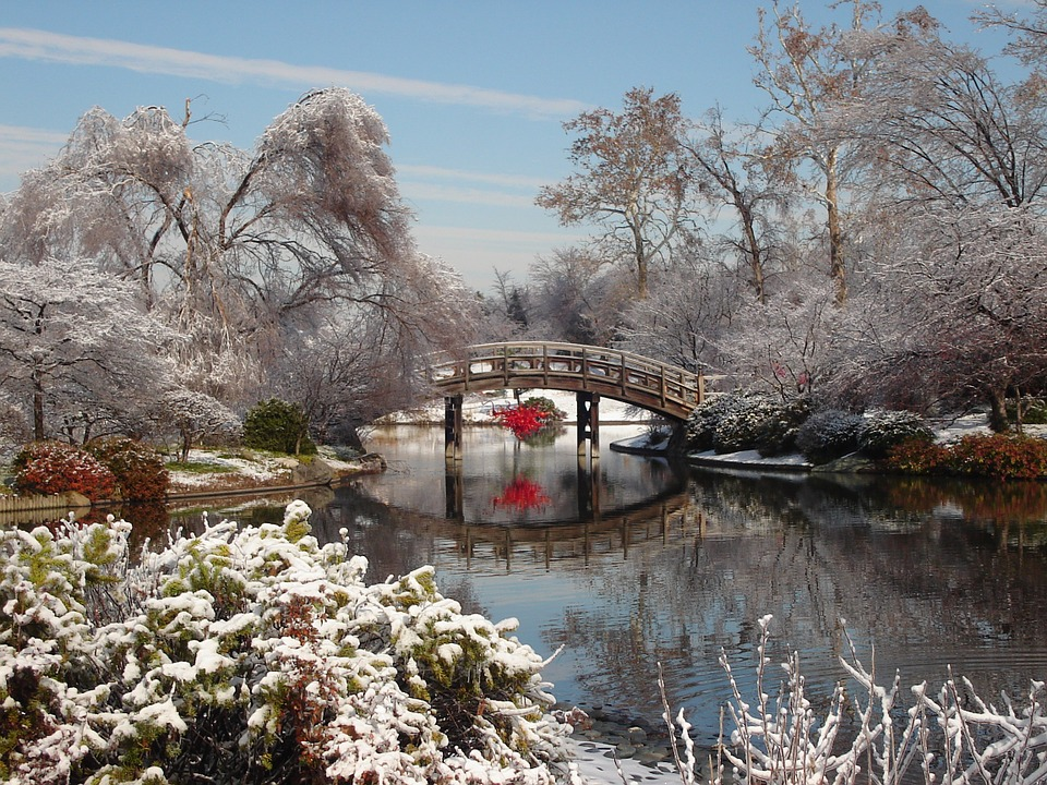 Winter in the park - Something there under the bridge of red. I just do not know what (10×10)
