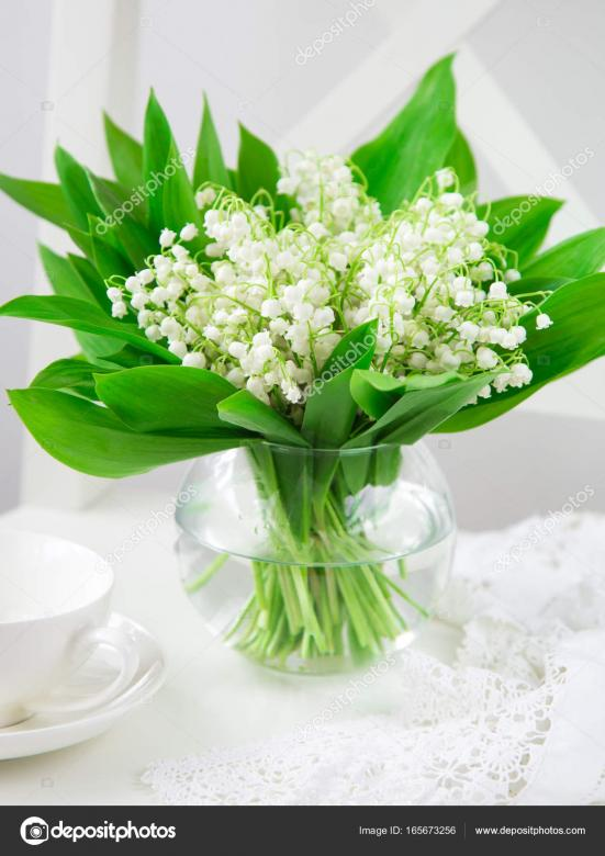 lilies of the valley - A beautiful delicate flower-lily-of-the-valley (13×13)
