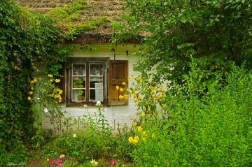 Cottage with garden. - Landscapes. Cottage with garden.