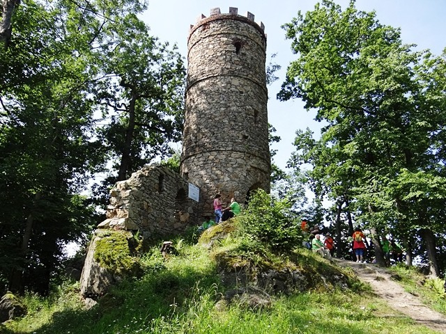 Ruins of the castle in Budowcu - The ruins of the castle in Bukowiec (8×8)