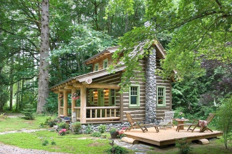 a house in the forest - wooden house in the forest, nature (11×9)