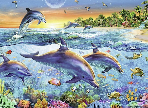 Lovely dolphins - Sea animals. Dolphins (10×9)