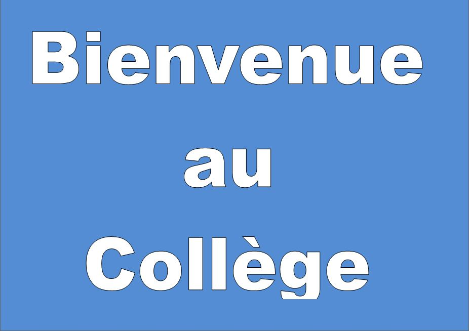 Bienvenue - Welcome to the French language