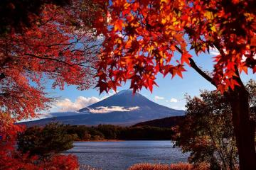 Calm and peace - red leaves autumn in mountains