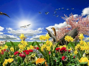 Spring in nature. - Spring flowers. Jigsaw puzzle.