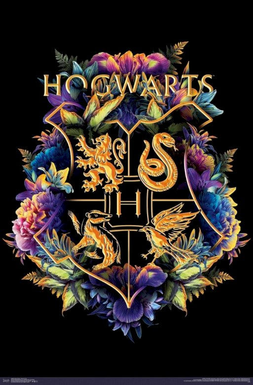 Hogwarts Shield ..... - It is the shield of the Hogwarts school of magic and sorcery