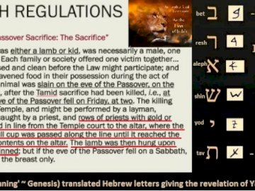 Pesach (Passover) Regulations ~ In the Beginning - The Passover (Pesach) Regulations In the Beginning (Bereshit) reveals The Lamb of Elohim