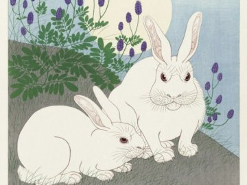 Art for Easter - Drawing rabbits on the grass