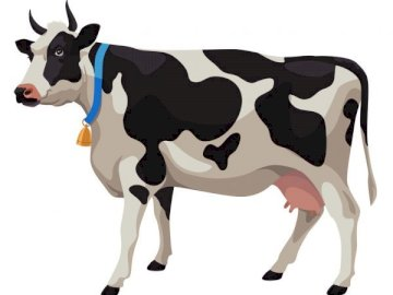 cow puzzle - Arrange the puzzles and say what you see in the picture? Where can you meet these animals? What colo