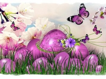 Easter preparations - Everyone is preparing for the holidays.